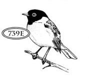 Catslife Press Unmounted Rubber Stamp Bird on Branch