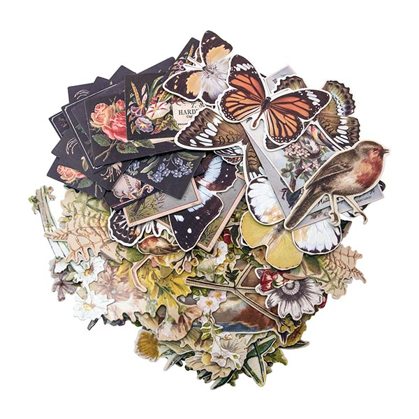 Tim Holtz Idea-ology Ephemera Layers - Botanical