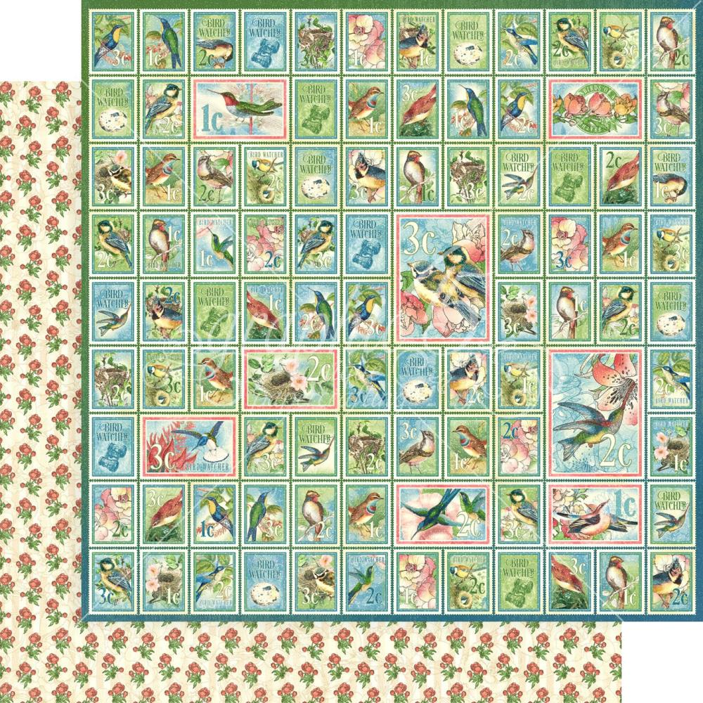 Graphic 45 12 x 12 Bird Watcher Collection - Best of Friends