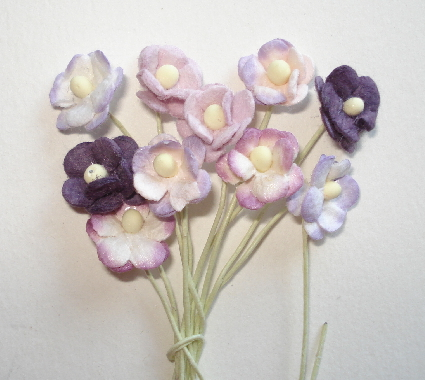 10 - Miniature Mixed Blossom Flowers - Purples