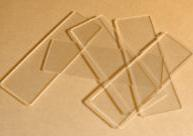 Artist Grade Microscope Glass Slides for ATCs 10/pkg.