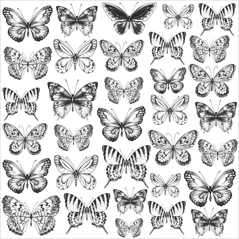 "Kaisercraft's Romantique 12"" x 12"" Acetate Butterflies"