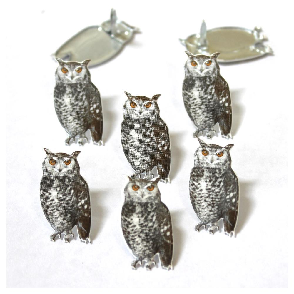 Eyelet Outlet Sqretch Owl Brads - 12/package