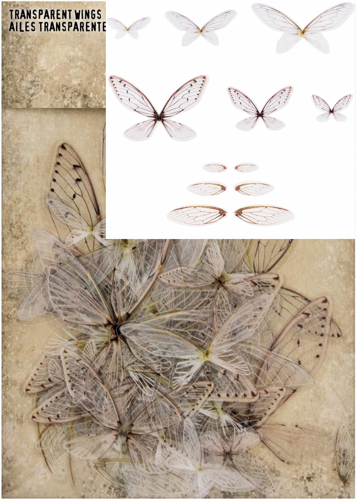 *NEW Tim Holtz Idea-ology Transparent Wings 72/pkg.