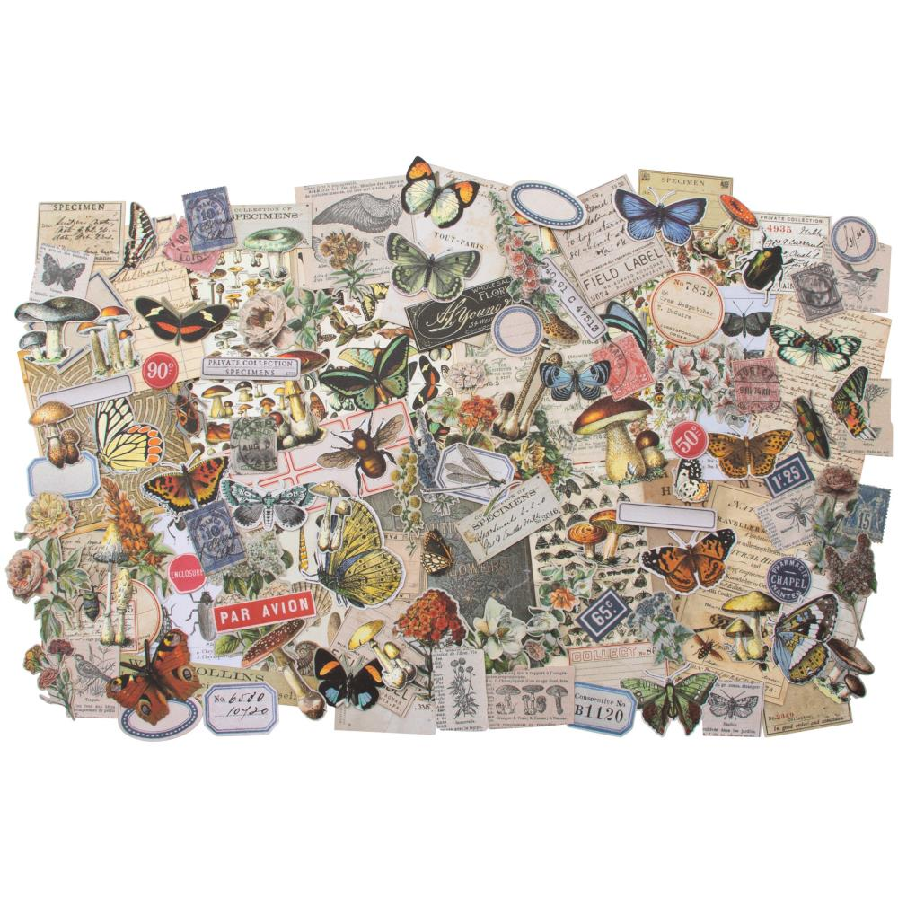 *NEW Tim Holtz Idea-ology Ephemera Pack - Field Notes - 134 Pcs.