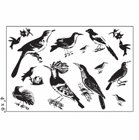 Maya Road Clear Stamp Set - Ornate Feathered Friends Bird Stamps