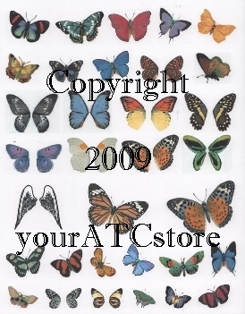 yourATCstore Beautiful Butterfly Wings Collage Sheet #1