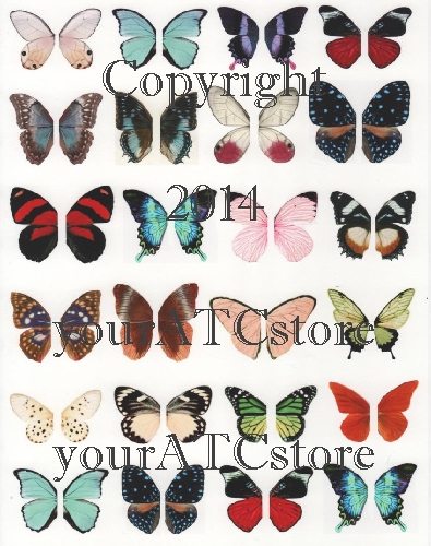 yourATCstore Beautiful Butterfly Wings Collage Sheet #2