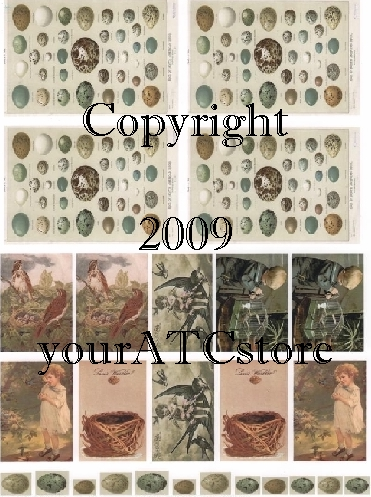 yourATCstore ATC Bird Collage Sheet