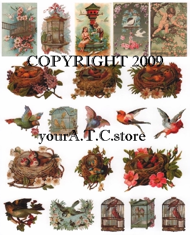 yourATCstore Birds, Nests & More Collage Sheet