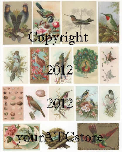 yourATCstore Hummingbirds and More Collage Sheet